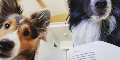 Puppygarten: Life Skills for Good Dogs