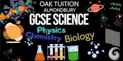 GCSE science revision class