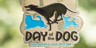 Now Only $14! Day of the Dog: Run, Walk or Jog 5K & 10K - St. Louis