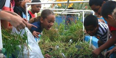 Gardening 101: Composting & Worm Class