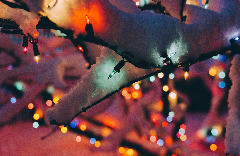 PLIG December Social