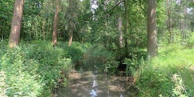 Infowandeling Natuurbeheer