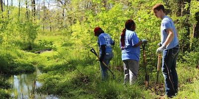Murfreesboro's Park Day Volunteer Event