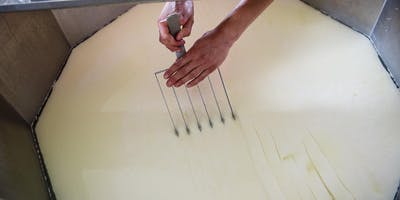 Hands-on Cheesemaking Class at Valley Milkhouse