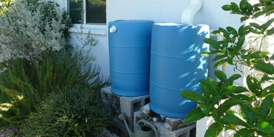Rain Barrel Workshop (TLP)