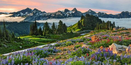 Mt Rainier National Park Nature Photography Workshop Hosted by Aaron Reed tickets