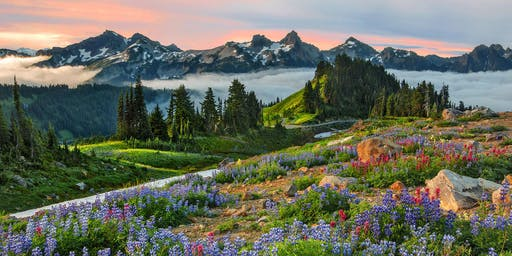 Mt Rainier National Park Nature Photography Workshop Hosted by Aaron Reed