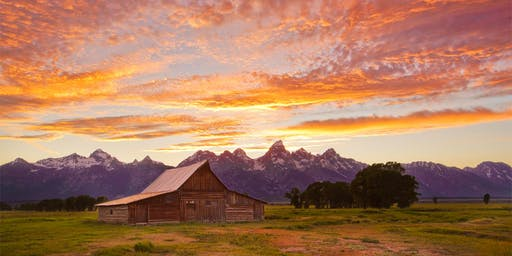Yellowstone & Grand Teton