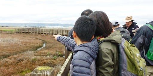 Family Bird Walk