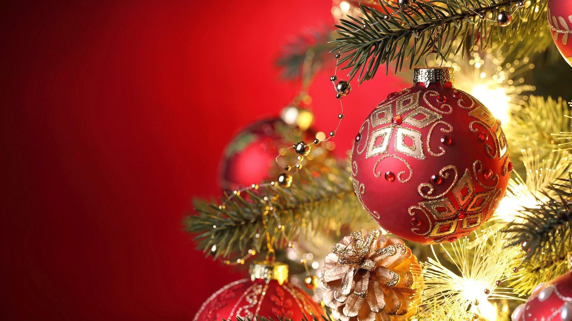 Christmas Celebration - Outreach Choir & Orchestra - 2 DEC 2018