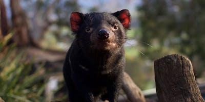 Bonorong Wildlife Rescue Training - LAUNCESTON - 13 April 2019