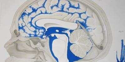 Neurofascial Approach to Headaches (1/2 IntraOral Cert.)