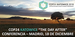 """COP24 Katowice: """"The Day After"""""""