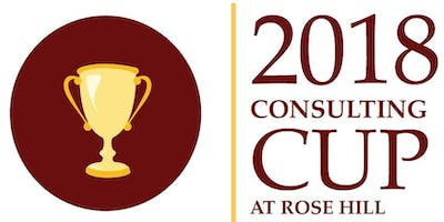 Fall 2018 Consulting Cup