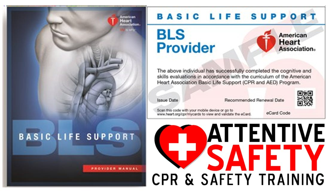 Bls For Healthcare Providers Class 100 Same Day Certification