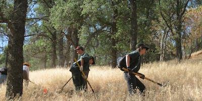 Diablo Restoration Team Workday - Marsh Creek 7