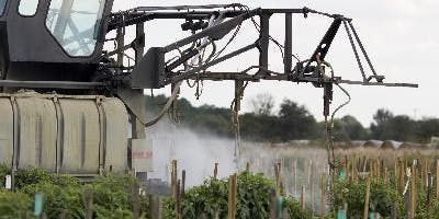 General Certification Standards Training & Testing for Pesticide Applicators