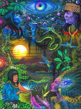 Ayahuasca Insights - Phoenix