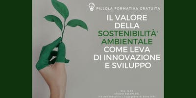 La Sostenibilità ambientale come leva di innovazione e sviluppo