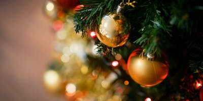 Free Holiday Portraits & Shaklee Gift Showcase