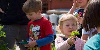 Little Sprouts Kitchen Garden Learning Program 2019