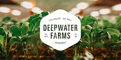 DEEPWATER FARMS | Official Launch Party