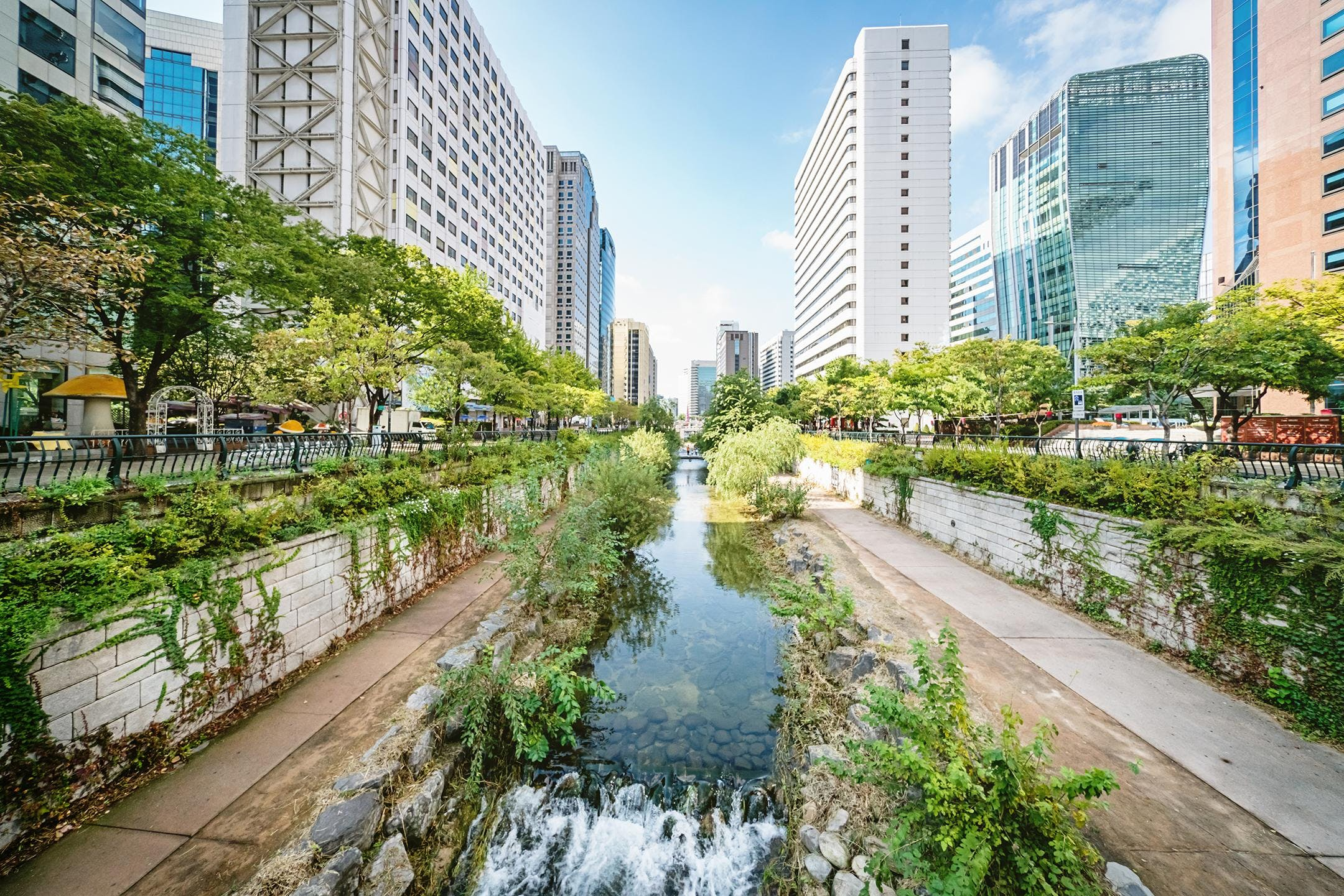 Cities of the future – water wise, resilient,