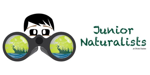 Junior Naturalists 2019