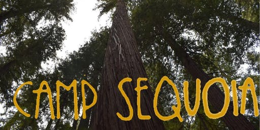 Camp Sequoia 2019
