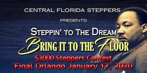 MLK Contest 2020