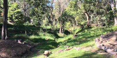 Stotts Reserve Bushcare Volunteer Group Meeting