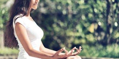 Développer son bien-être par la Mindfulness  Atelier D133