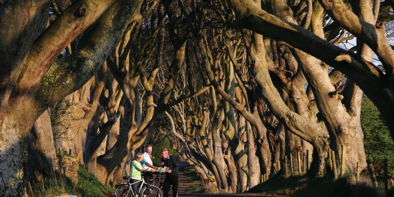 Game of Thrones Tour from Dublin Including Giants Causeway ( Avail Jul 19 - Sep 19)