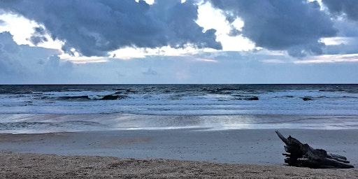 Beach Exploration