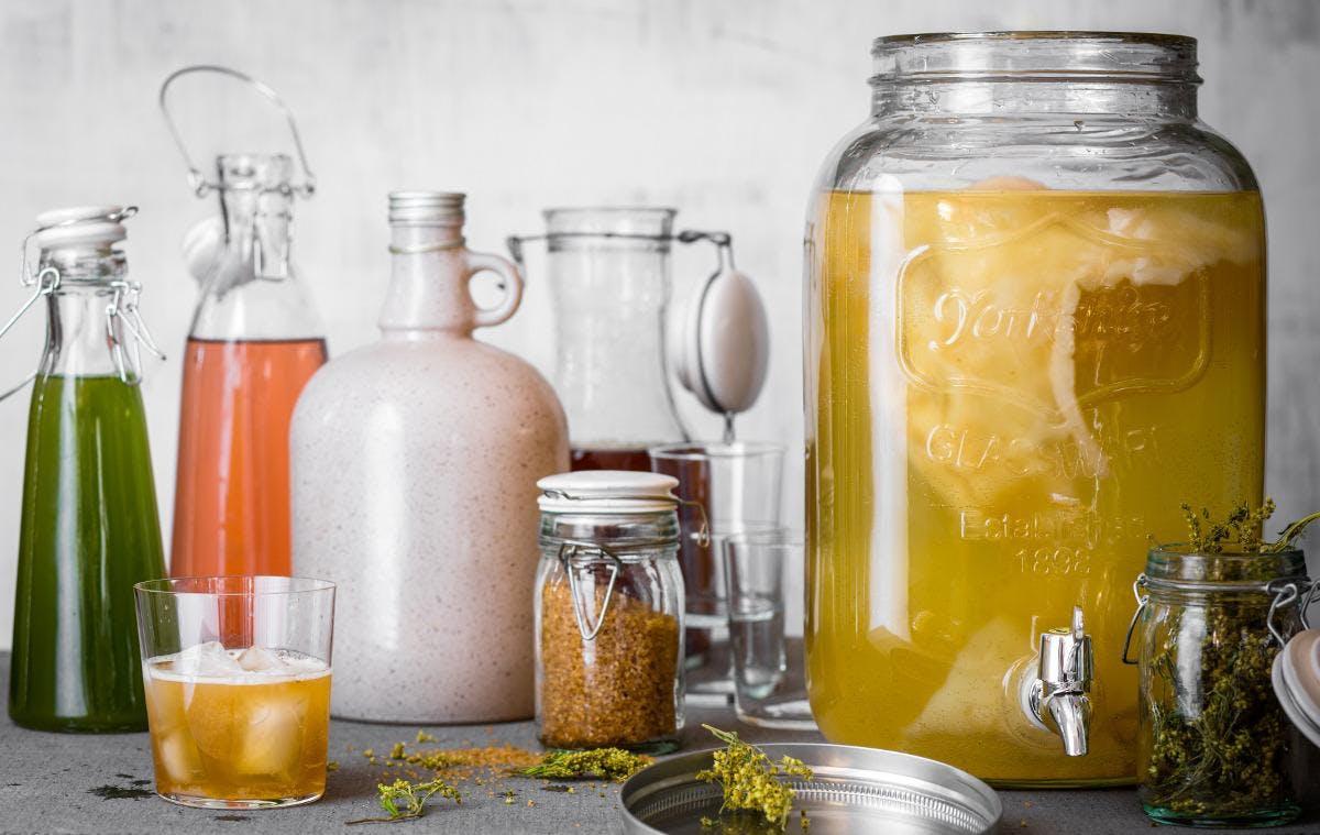 Atelier kombucha, kéfir de fruits, jus pétill