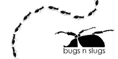 Meet the Bugs - Noarlunga Library