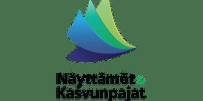 Haastepaja Triuvare 4.12.2018 - 18.12.2018