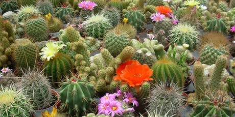 Cactus Garden Workshop tickets