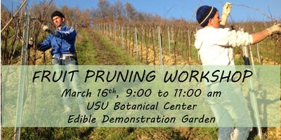 Fruit Tree, Grape, and Berry Pruning Demonstration