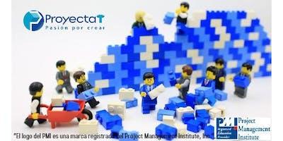 Diplomado en Dirección de Proyectos con Design Thinking y Bloques LEGO®