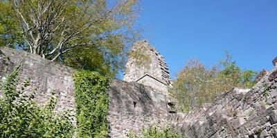 Single-Wanderung Yburg - Petersee (35-55)