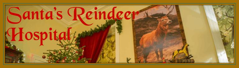 Santa's Reindeer Hospital