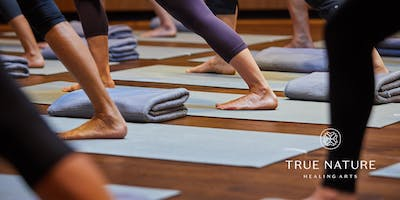 Foundations of Yoga Series