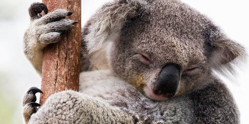Ballarat Wildlife Park with Fun Addicts