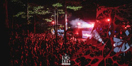 Big Dub Festival 2019 tickets