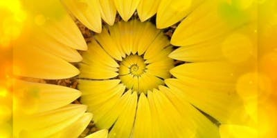 Solar Plexus Chakra Healing Clinic - Bellingham - December