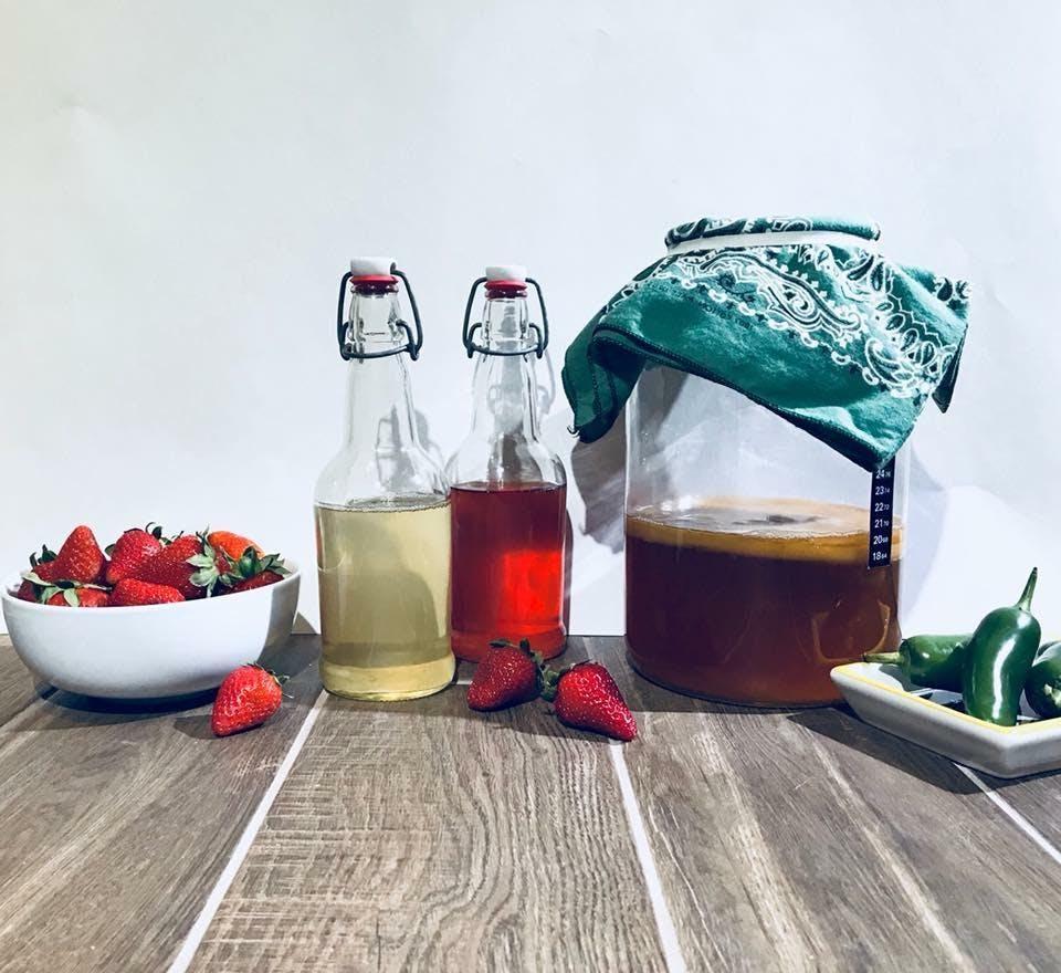 Kombucha Brewing 101