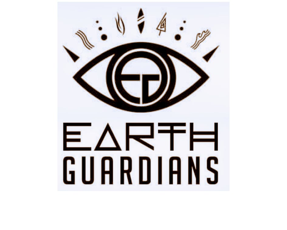 Earth Guardians Phx Kids Tribe - Solstice & Shirt Painting