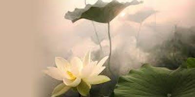 Awakening Wisdom: Joy of Living 3