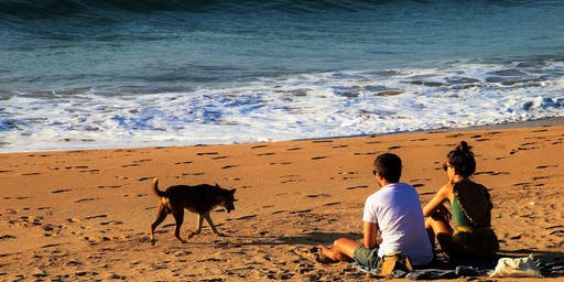 August Marriage Tune-Up: The Dog Days of Summer